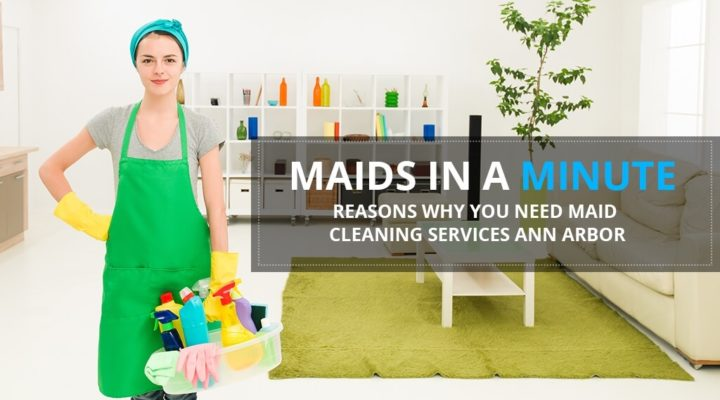 maids in a minute reasons why you need maid cleaning services ann arbor