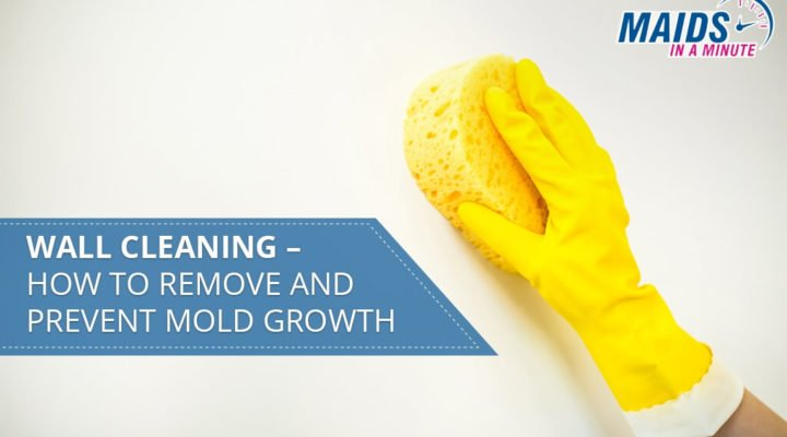 Wall-Cleaning-–-How-to-Remove-and-Prevent-Mold-Growth